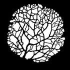 Steel Gobo, Tree Budding Thin