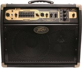 "2-Ch 100W 1x10"" Acoustic Guitar Amplifier"