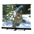 10' x10' Luma 2/R Projection Screen in Matte White, Screen Only