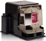 Replacement Lamp for IN3114, IN3116 Projectors