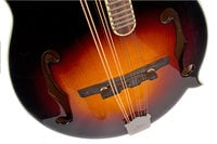 Performer Series Gloss Vintage Sunburst F-Style Mandolin with Hand-Carved Top