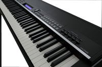 Professional Digital Piano