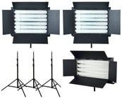 FloLight Fluorescent Video Light Kit with Stands and Wireless Dimming