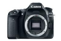 24.2 APS-C Digital Camera with 18-135 USM lens