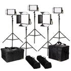 Lyra BiColor 5Point LED SoftPanel Light Kit
