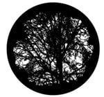 Apollo Design Technology SR-1215  Mature Tree Glass Gobo
