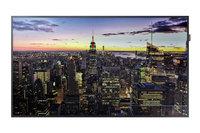 "Samsung QM65H  65"" Edge-Lit 4K UHD LED Display for Business"