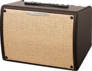"8"" Acoustic Amplifier, 30 Watt"
