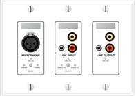 Remote Audio Device