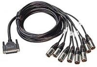 10 ft DB25 Male to 8 Male XLR Snake
