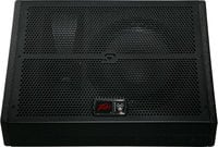 "Peavey SP15M Two-Way Floor Monitor with 15"" Woofer"