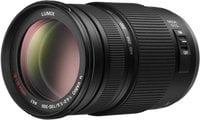 Lumix G Vario 100-300 mm/F4.0-F5.6/MEGA O.I.S. Lens with Micro 4/3 Mount
