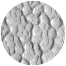 Rosco Laboratories 33617 Hammered Image Glass 33617