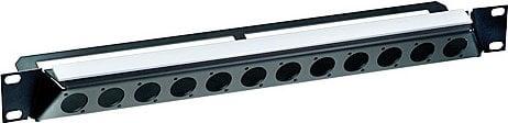 "Neutrik NZP1RU-12  19"", Angled Rack Panel with 12 D-Shape Cut-Outs NZP1RU-12"