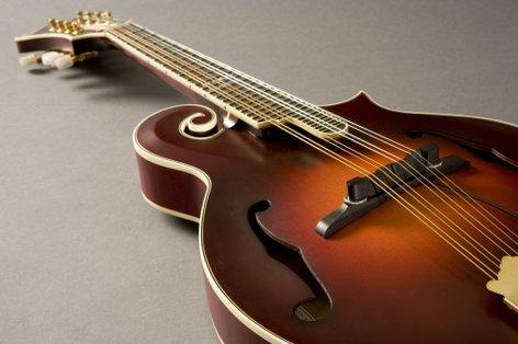 Fishman M-300 Nashville Series Archtop Mandolin Pickup Mandolin Pickup PRO-M30-0MA
