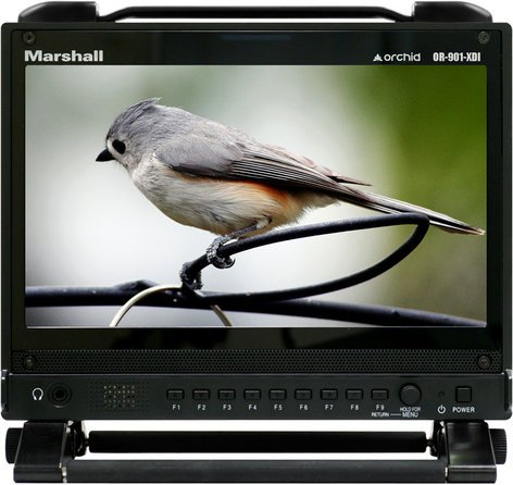 "Marshall Electronics OR-901-3GSDI 9"" Rack-Mount HD-SDI/HDMI 3D-Ready Monitor OR-901-XDI"
