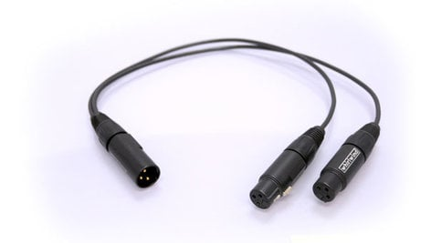 Whirlwind YX2F Y-Cable, XLRM to Two XLRF, 1.5ft YX2F