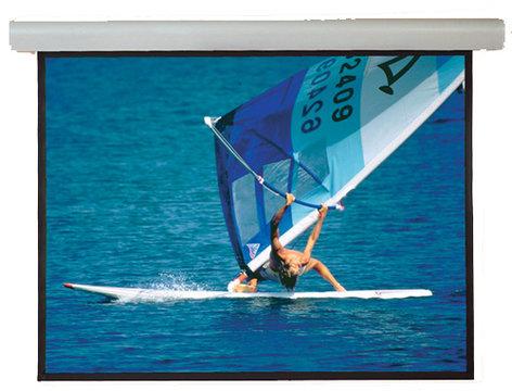 Draper Shade and Screen 108219 Screen SilhE MW 96x96 SV 110V  108219