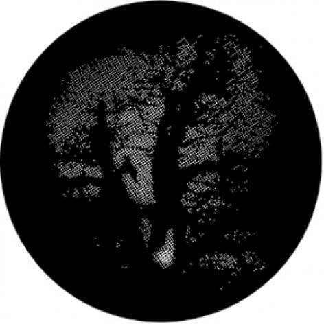 Rosco Laboratories 77611 Oak Tree Meshed Gobo 77611