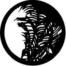 Rosco Laboratories 77127 Palm Leaf Gobo 77127