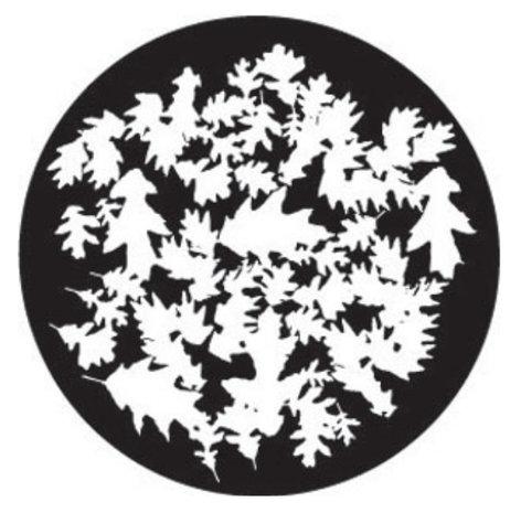 Rosco Laboratories 78700 Oak Leaf Break Up Gobo 78700