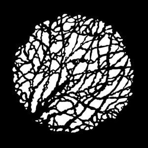 Apollo Design Technology MS-3567 Budding Branches Steel Gobo MS-3567