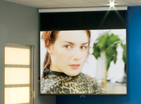 "Draper Shade and Screen 207101  106"" HDTV Format Luma Screen with Matt White XT1000E Surface Finish 207101"