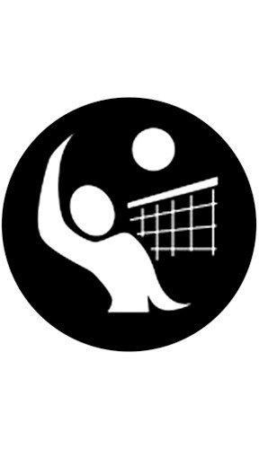 "Rosco Laboratories 78501 ""Volleyball 2"" Pattern Gobo 78501"