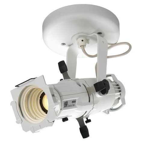 ETC/Elec Theatre Controls 4M50LG-I-1 Source Four Mini LED Gallery 50° Fixture with Canopy Mount in White 4M50LG-I-1