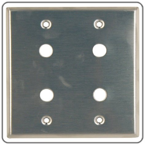 RapcoHorizon Music DP-6D Dual Gang Wall Plate with 6 Cut Outs for D Series Connectors DP-6D