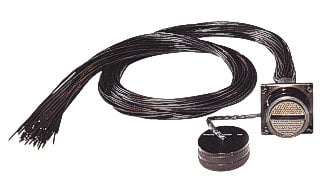 Whirlwind W3 Wired Cable 75' to Tails PK-32-W3CRP(0)-75