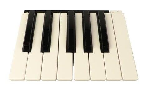Korg 510646502086  Bank of 13 Keys for Pa500 510646502086