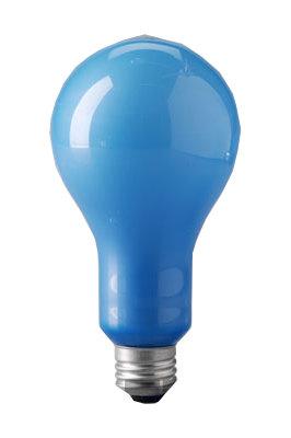 Eiko EBW-EIKO  Blue Frosted Bulb EBW-EIKO