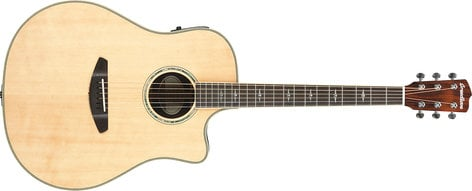 Breedlove 16' Stage Dreadnought Acoustic-Electric Guitar STAGE-DREAD