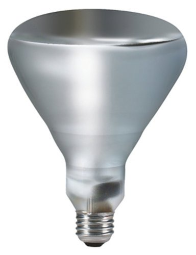 Philips BR40 300W 120V Indoor Incandescent Flood Lamp BR40/FL-PH