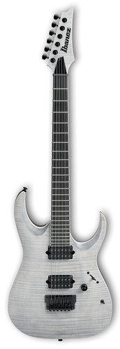 Ibanez RGAIX6FM RGA Iron Label 6-String Electric Guitar - White Frost Flat RGAIX6FMWFF
