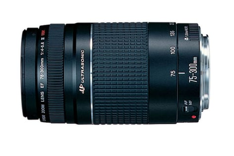Canon 6473A003 EF 75-300mm f/4-5.6 III Telephoto Zoom Lens 6473A003