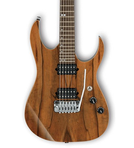 Ibanez MSM1 Marco Sfogli Signature 6-String Electric Guitar with Case MSM1
