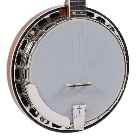 Recording King RK-R36 Madison Series Gloss Brown Resonator Banjo with Mastertone-Style Tone Ring RK-R36-BR