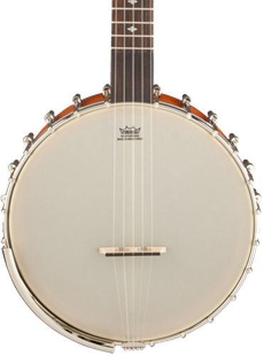 Gretsch Guitars Dixie Special Amber Roots Collection 5-String Open-Back Banjo G9455