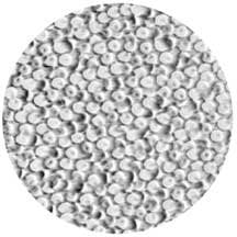 Rosco Laboratories 33615 Gobo Glass Coalescing Bubbles 33615
