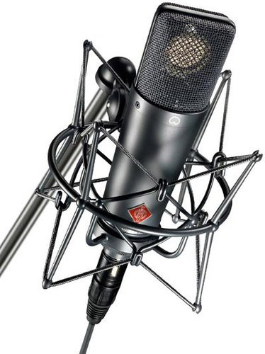 Neumann TLM 193 Large Diaphragm Cardioid Microphone with Mount & Case TLM193