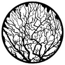 Rosco Laboratories 79119 Gobo Winter Tree 2 79119