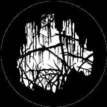 Rosco Laboratories 77862 Gobo Spooky Wood 77862