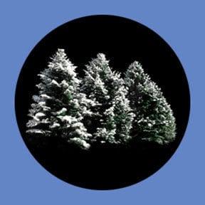 Rosco Laboratories P6919  iPro Trees & Foliage Slide P6919