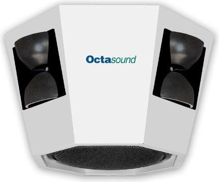"Octasound SP810A Central Speaker System: 10"" Woofer, 4x 6""x6"" Compression Horn/Drivers SP810A"
