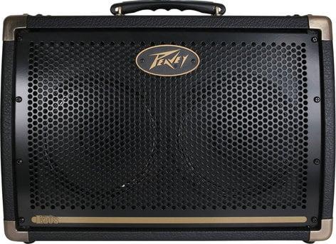 """Peavey ECOUSTIC-E208 Ecoustic E208 2-Ch 30W 2x8"""" Acoustic Guitar Amplifier ECOUSTIC-E208"""
