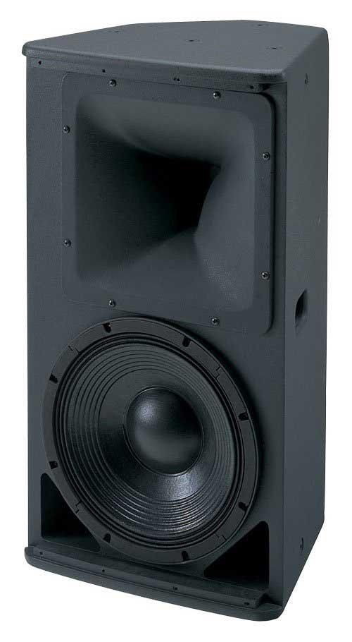 """12"""" 2-Way Full Range Speaker"""