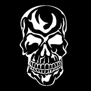 Steel Gobo, Skull Evil