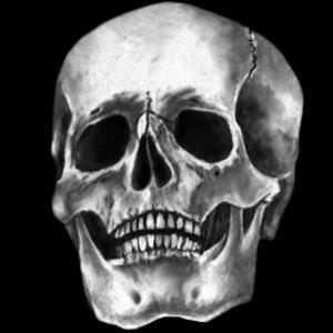 Glass Gobo, Skull